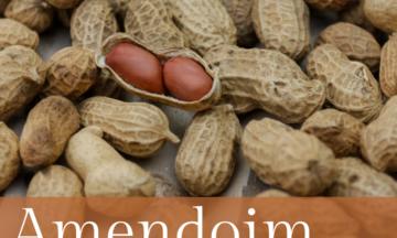 8 Benefícios do Amendoim